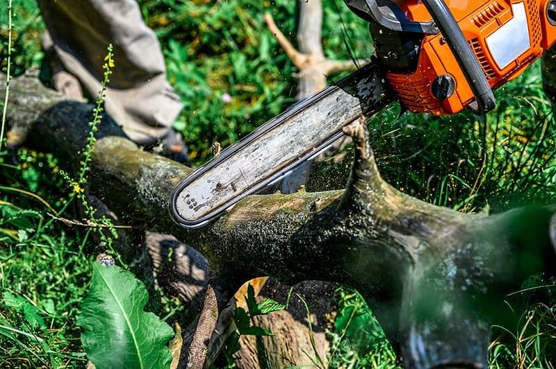 chainsaw-accident-cutting-project