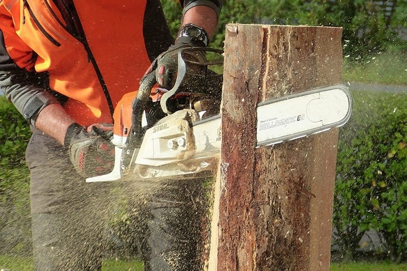 chainsaw-accident-cutting-tree-using-chainsaw