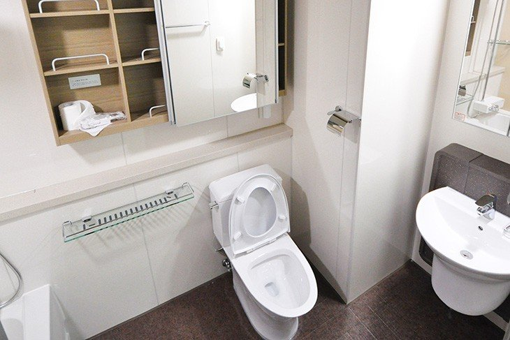 plumbing-projects-toilet-seat